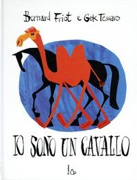 Bernard Friot et Gek Tessaro - Io sono un cavallo.