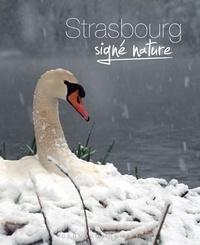 Bernard Irrmann - Strasbourg signé nature.