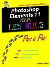 Bernard Jolivalt - Photoshop éléments 11 - Pas à pas Pour les nuls.