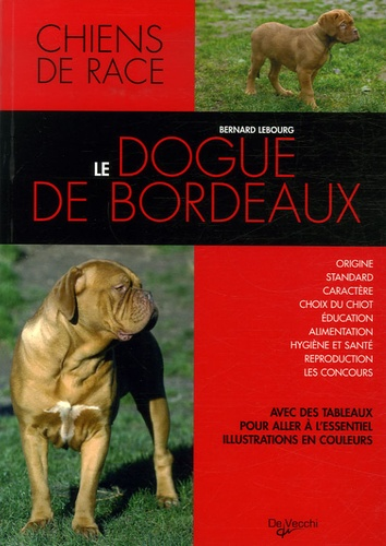 Bernard Lebourg - Le dogue de Bordeaux.