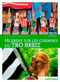 Bernard Rio - Pèlerins sur les chemins du Tro Breiz.
