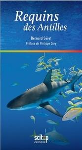 Galabria.be Requins des Antilles Image