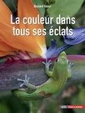 Bernard Valeur - La couleur dans tous ses éclats.