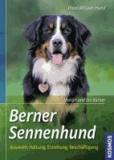 Berner Sennenhund - Auswahl, Haltung, Erziehung, Beschäftigung.