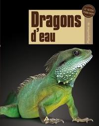 Bert Langerwerf - Dragons d'eau.