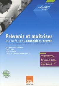 Bertrand Dautzenberg et Léna Etner - Prévenir et maîtriser les méfaits du cannabis au travail.