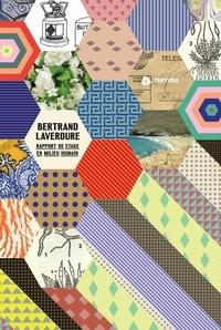 Bertrand Laverdure - Rapport de stage en milieu humain.