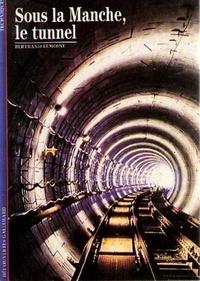 Lesmouchescestlouche.fr Sous la Manche, le tunnel Image