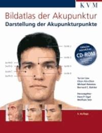 Bildatlas der Akupunktur - Darstellung der Akupunkturpunkte.