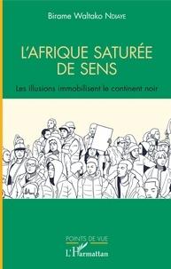 Birame Waltako Ndiaye - L'Afrique saturée de sens - Les illusions immobilisent le continent noir.