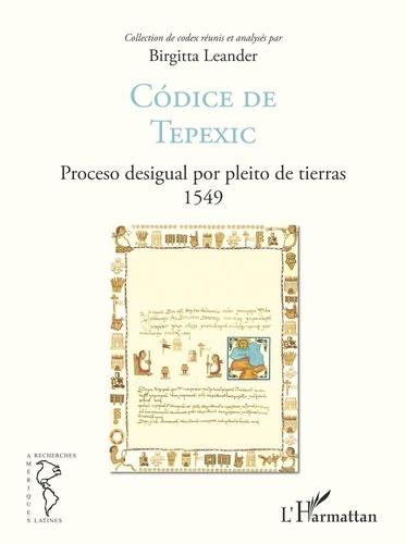 Codice de Tepexic. Proceso desigual por pleito de tierras 1549