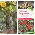 Blaise Leclerc et Jean-Jacques Raynal - Drôles de légumes ! - De nouveaux goûts à cultiver.