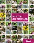 Blandine Delenatte - Insectes en montagne - Un guide + un carnet de terrain.