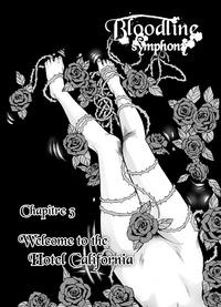 Noelia Sequeida - Bloodline Symphony Chapitre 3 - Welcome to the hotel California.
