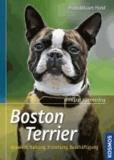 Boston Terrier - Auswahl, Haltung, Erziehung, Beschäftigung.