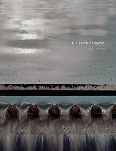 Brad Temkin - Brad Temkin : The State Of Water.