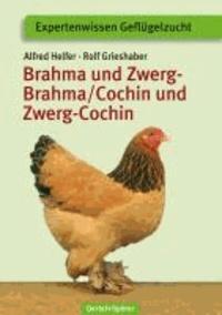 Brahma und Zwerg-Brahma, Cochin und Zwerg-Cochin.