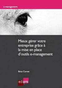 Brice Cornet - Mieux gérer votre entreprise grâce à la mise en place d'outils e-management - Méthodologies, implémentation et bénéfices pour les indépendants, TPE et PME.