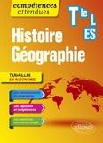 Brice Rabot - Histoire Géographie Terminale L-ES.