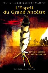 Histoiresdenlire.be L'esprit du grand ancêtre. La voie de sagesse des Indiens d'Amérique Image