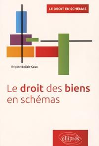 Brigitte Belloir-Caux - Le droit des biens en schémas.