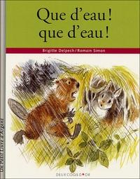 Brigitte Delpech - Que d'eau ! que d'eau !.