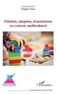 Brigitte Tison - Filiation, adoption, transmission en contexte multiculturel.