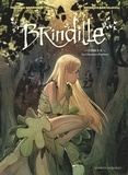 Brindille - Tome 01 - Les Chasseurs d'ombre.
