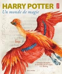 Harry Potter- Un monde de magie -  British Library pdf epub