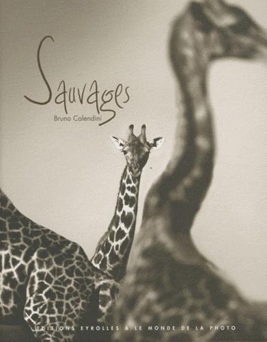 Bruno Calendini - Sauvages.