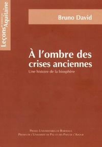 Bruno David - A l'ombre des crises anciennes - Une histoire de la biosphère.