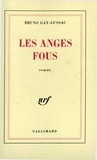 Bruno Gay-Lussac - Les anges fous.