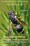 Bruno Gereys - Vespidae solitaires de France métropolitaine (Hymenoptera : Eumeninae, Masarinae).