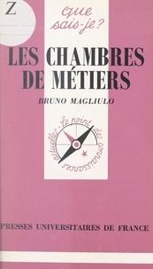 Bruno Magliulo et Paul Angoulvent - Les Chambres de métiers.