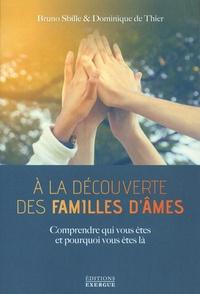 Ebooks italiens téléchargement gratuit A la découverte des familles d'âmes  - Comprendre qui vous êtes et pourquoi vous êtes là (Litterature Francaise)