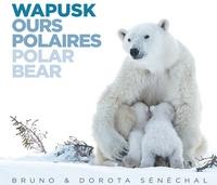 Bruno Sénéchal et Dorota Sénéchal - Wapusk ours polaires.
