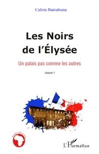Calixte Baniafouna - Les Noirs de l'Elysée - Tome1, Un palais pas comme les autres.