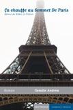 Camille Andrea - Ca chauffe au sommet de Paris - Retour de Robin le Crétois.