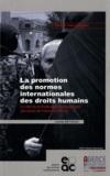 Camille Bethoux - La promotion des normes internationales des droits humains - Le rôle de la Fédération internationale des droits de l'Homme (FIDH).