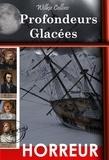 Camille de Cendrey et Wilkie Collins - Profondeurs  Glacées - d'après la tragédie vraie de  l'expédition Franklin.