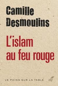Rhonealpesinfo.fr L'islam au feu rouge Image