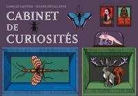 Camille Gautier et Jeanne Detallante - Cabinet de curiosités.