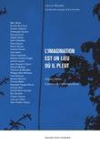 Camille Saint-Jacques et Eric Suchère - L'imagination est un lieu où il pleut - Gilgian Gelzer et pratiques contemporaines.