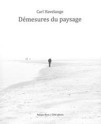 Carl Havelange - Démesures du paysage.