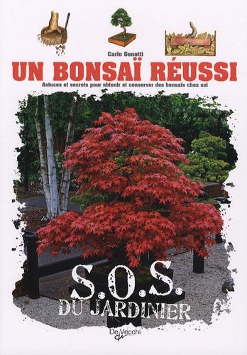 Carlo Genotti - Un bonsaï réussi.