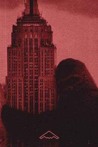 Carol Willis - Form Follows Finance - L'Empire State Building et les forces qui l'ont façonné.