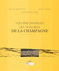 Openwetlab.it Vues panoramiques des vignobles de la Champagne - Evolution entre 1887 et 2007 Image