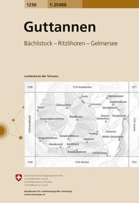 Swisstopo - Guttannen - 1/25 000.