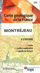 Montréjeau - 1/50 000.pdf