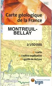 Jean-Marc Joubert et Denis Thièblemont - Montreuil-Bellay - 1/50 000.